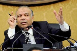 محمد سعد الكتاتني